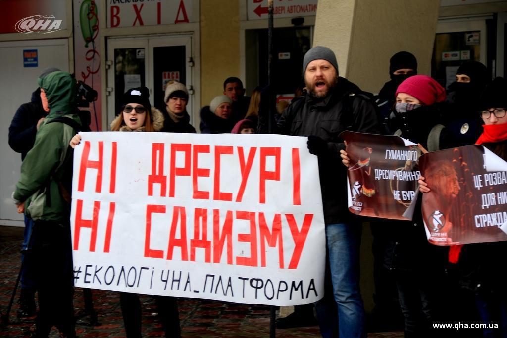 Зоозахисників, що пікетували львівський цирк відпустили: активісти прокоментували зухвалі дії поліціїї