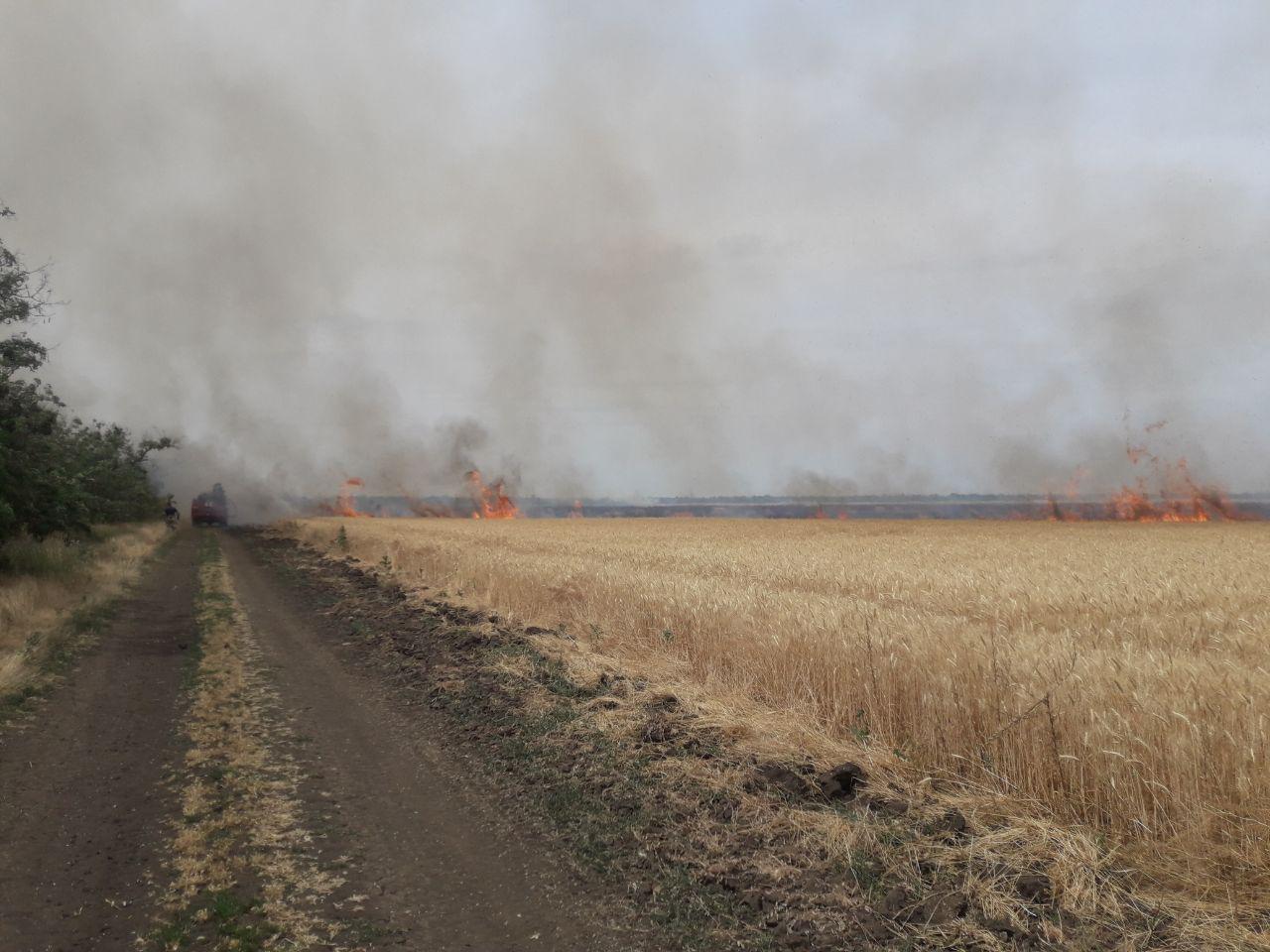 У Запоріжжі рятувальники ліквідували 2 пожежі на території сільськогосподарських угідь за добу