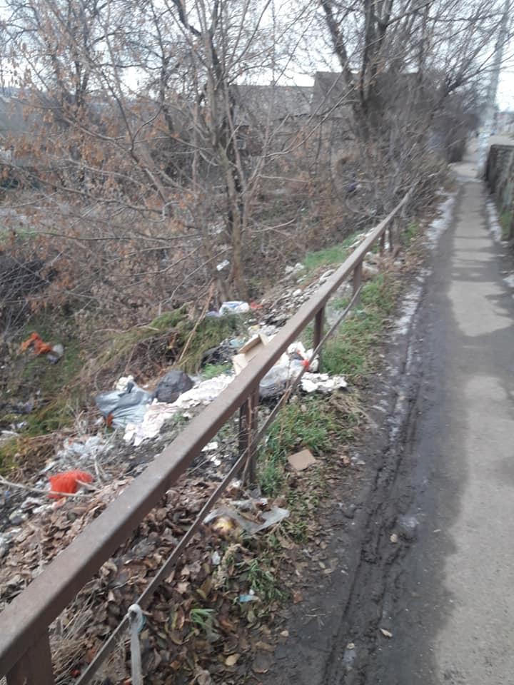 Місцеві мешканці перетворили селище на суцільний смітник – фото