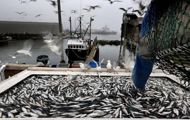 Бердянский рыбодобытчик, судно которого некануне задержали, получил очередное уголовное дело – видео