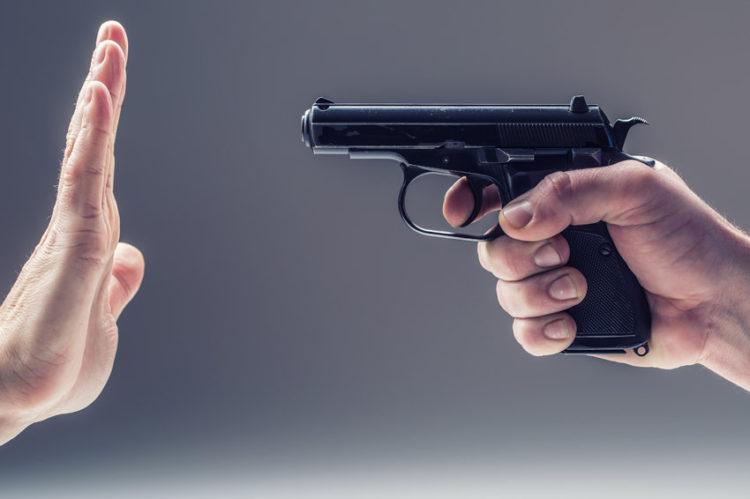 Зеленський відмовився підтримувати легалізацію зброї і пояснив чому