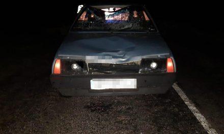 Поблизу Запоріжжя під колесами авто загинув пішохід