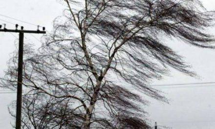 На Запоріжжі очікують пориви вітру та висоту хвиль на морі 13-15 дм.