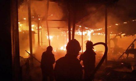 Внаслідок сильної пожежі на фермерстві в Запорізькій області загинуло кілька десятків тварин