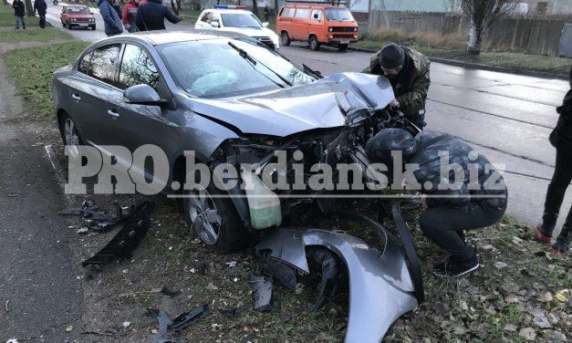 На Запоріжжі авто врізалося в стовб, на місці події працювала «швидка» – фото