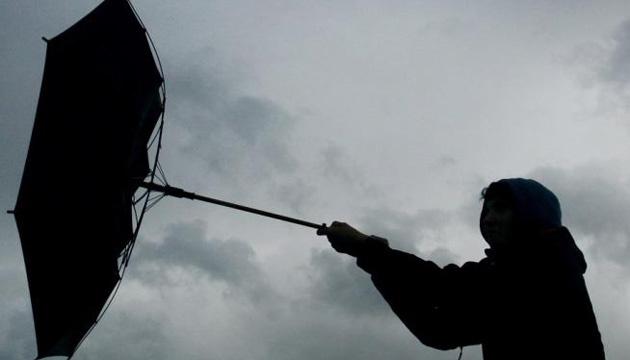 Завтра натериторіїЗапоріжжя та області передають сильні пориви вітру та ожеледь