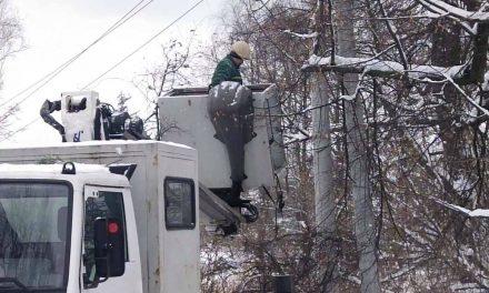 На Київщині бобри відключили електроенергію для цілого населеного пункту