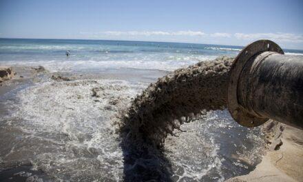 Мешканці Запоріжжя тепер можуть скаржитися на екологічні злочини – з'явився новий сервіс