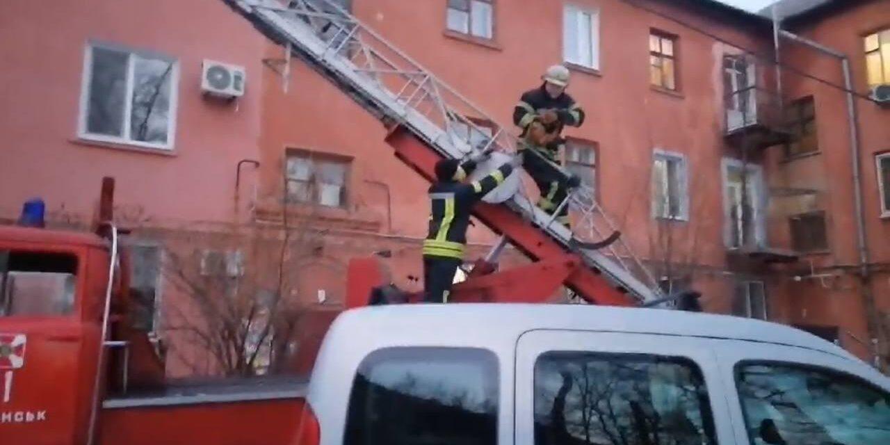 У Запоріжжі рятували кота, який виліз на дах будинку й не міг злізти – фото