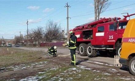 Мешканка Запоріжжя заявила, що газовики побили її собаку та відрізали шматок труби