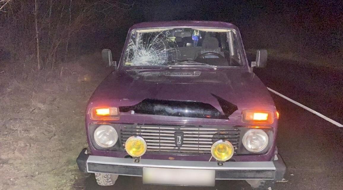 Смертельна аварія на Запоріжжі: під колеса авто потрапив 78-річний пенсіонер