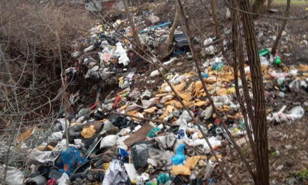 У Запоріжжі поблизу житлових будинків утворилося сміттєзвалище – фото