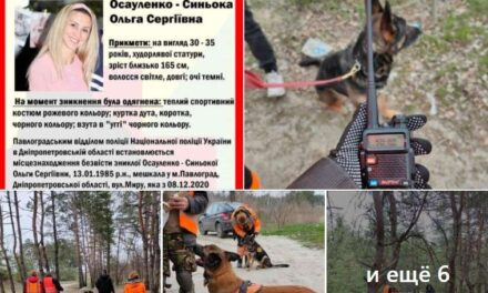 Волонтери, які 127 днів шукають дівчину із Запорізької області просять не вірити пліткам із знайденим черепом