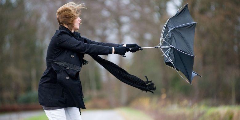 На Запоріжжі попереджають про сильні пориви вітру