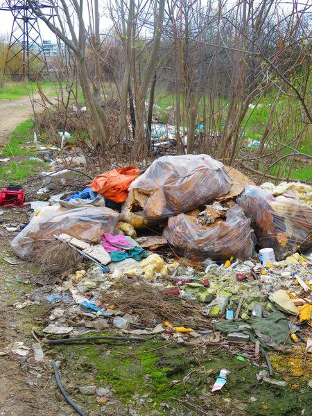 Запоріжці позносили понад 20 т сміття на несанкціоновані сміттєзвалища – фото