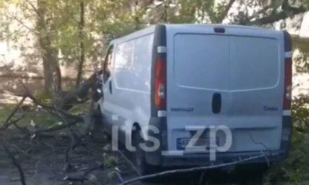 Сильний вітер у Запоріжжі звалив дерево прямо на автомобіль