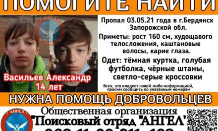 На Запоріжжі зникла дитина, шукають волонтери навіть з Херсона