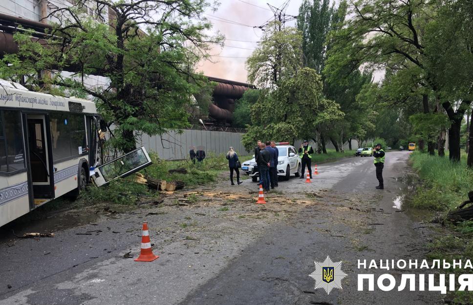 Водій комунального автобуса в Запоріжжі влетів у дерево з пасажирами