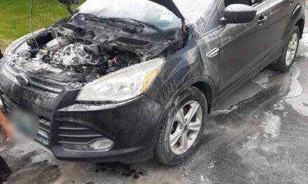 2 одиниці техніки та 8 рятувальників гасили загоряння авто у Запоріжжі – фото