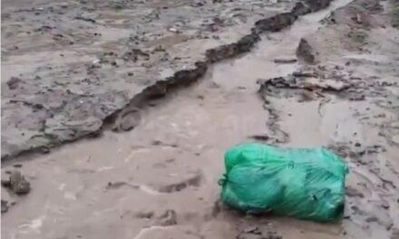 У спальному районі Запоріжжя негода зруйнувала цілу вулицю – відео