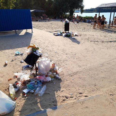 Щойно відремонтований пляж у Запоріжжі заріс бур'янами – фото