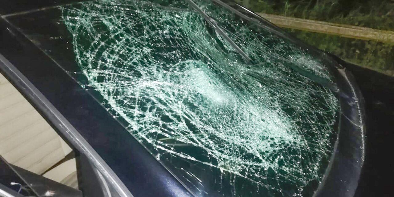На Запоріжжі п'яний водій збив трьох людей, двоє з яких – неповнолітні (фото)