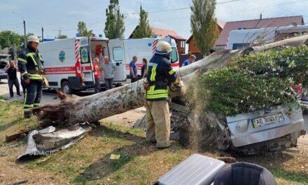 На Запоріжжі внаслідок масштабної аварії постраждало 6людей, 3 з яких – діти. Хлопчик загинув