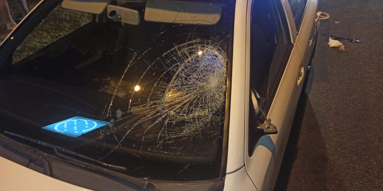 У Запоріжжі під колеса авто потрапив пенсіонер, постраждалий загинув – фото