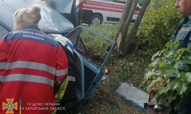 ДТП на Запоріжжі: автомобіль на швидкості врізався у дерево