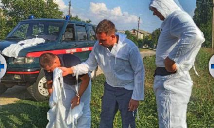 На Запоріжжі, де зафіксований спалах африканської чуми, встановили карантинно-поліцейські пости
