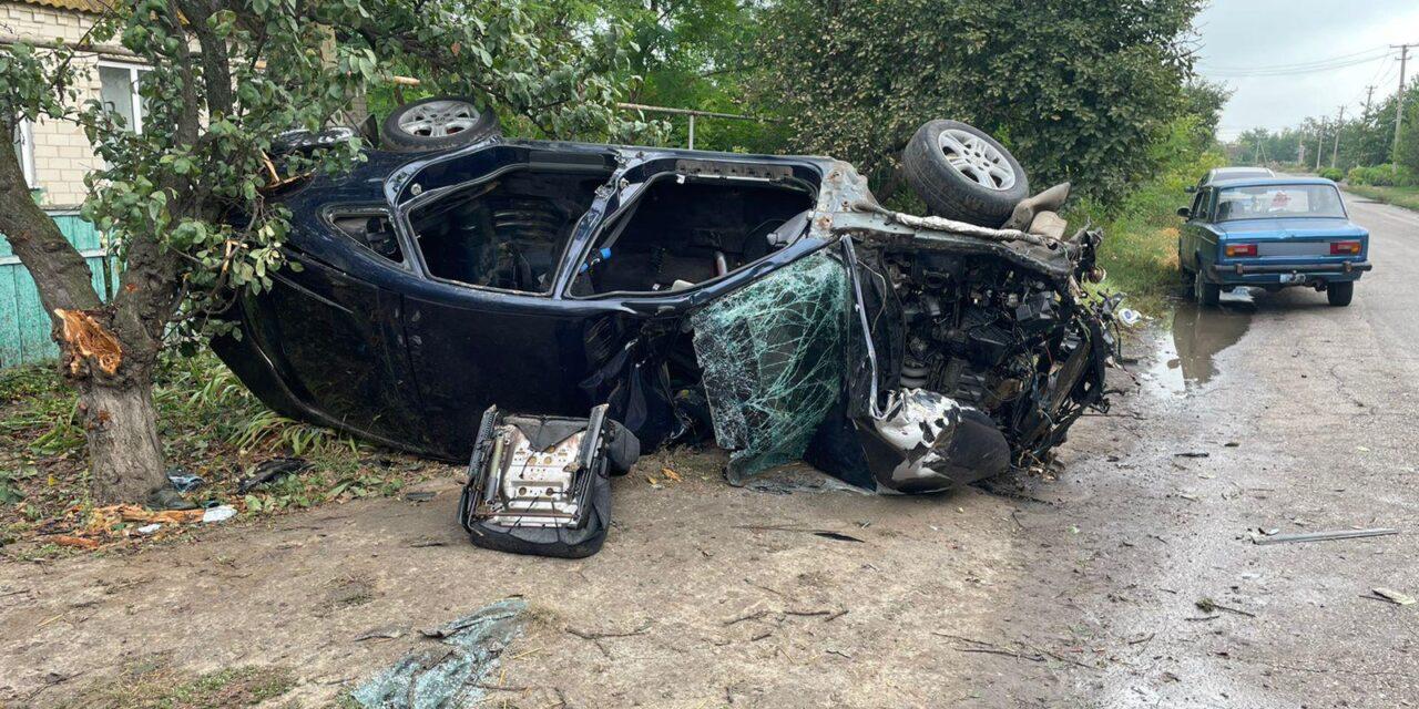 На Запоріжжі п'яний водій врізався в дерево, один чоловік загинув, ще одного доставили до лікарні – фото