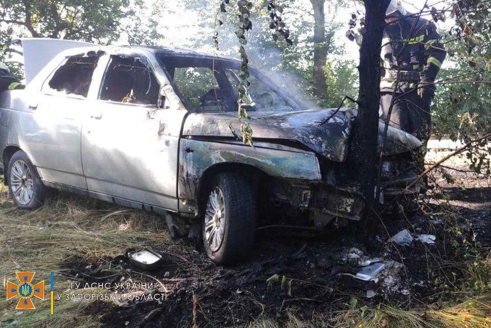 На Запоріжжі автомобільз'їхаву кювет і врізався в дерево – фото