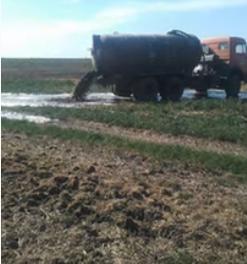 Через відсутність каналізації мешканці курортного селища на Запоріжжі страждають від смороду