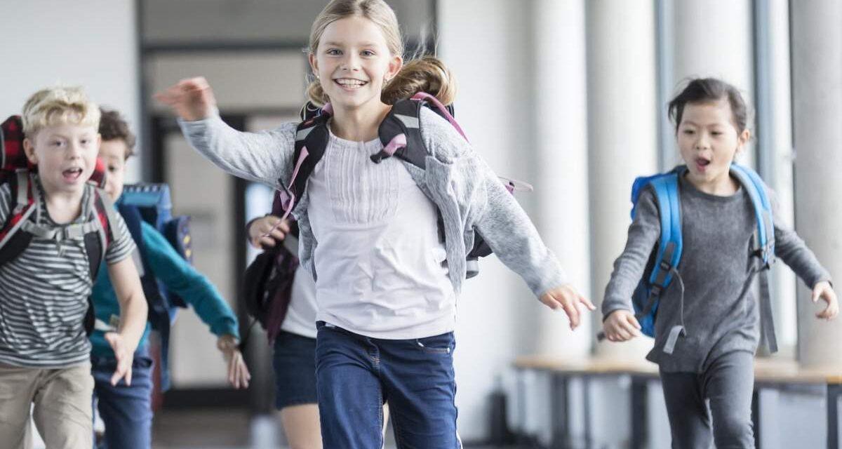 В школах Запорізької області можуть перенести шкільні канікули