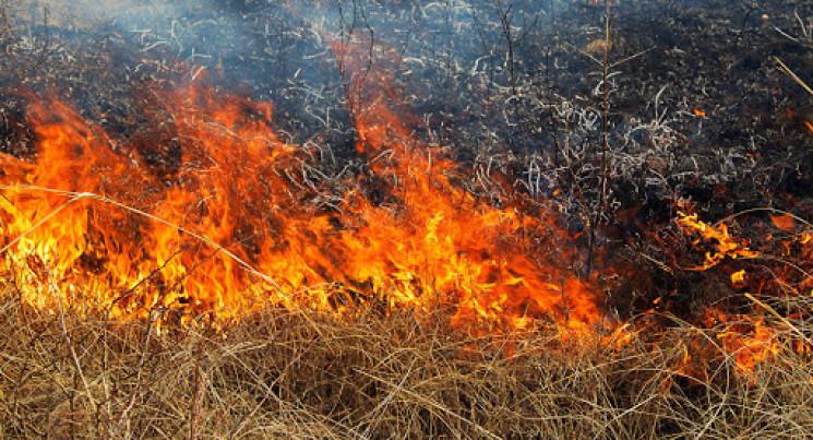 У Заводському районі міста Запоріжжя сталася пожежа на відкритій території